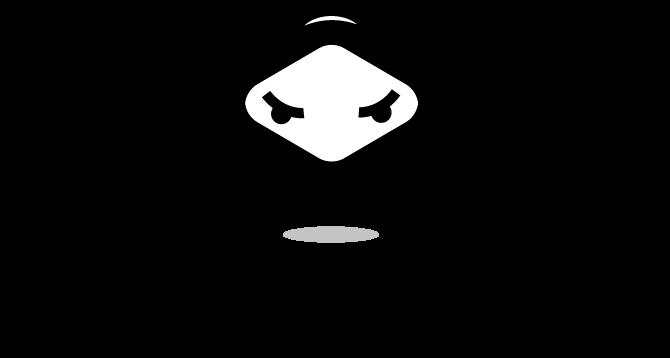 NinjaGuide